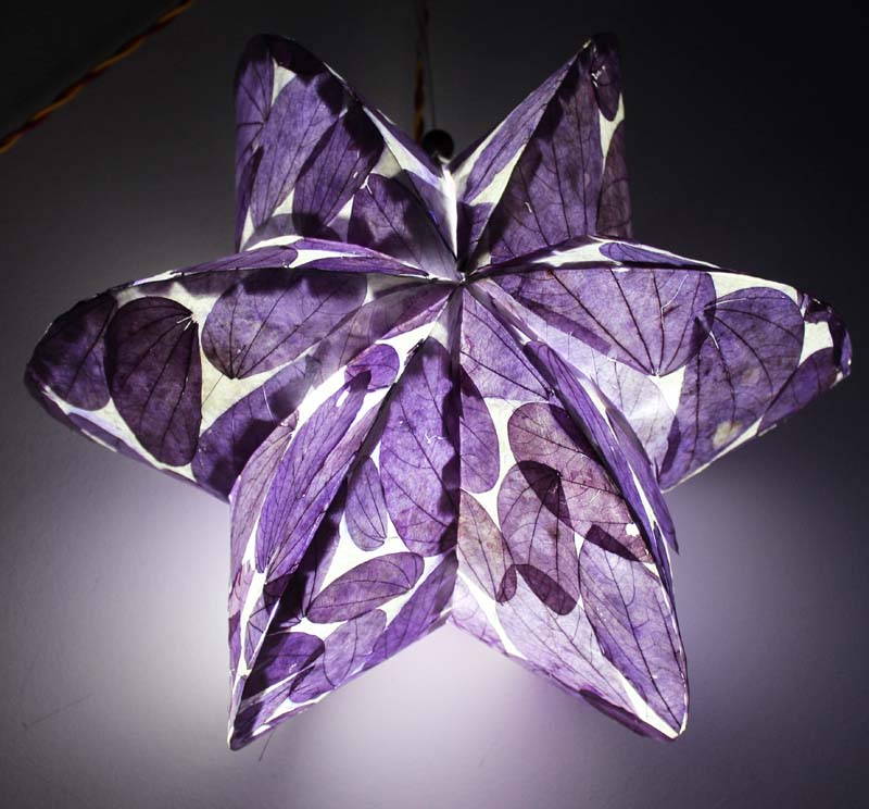 Leaves paper lanterns for Party