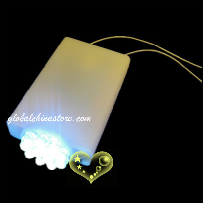 12 Led battery operated Light