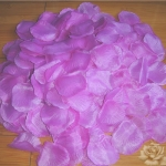 300 Rose Petals - Light Violet