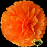 "12"" Tissue Paper Pom Poms Ball - Orange (4 pieces)"