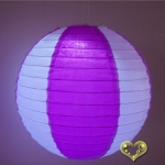 "8"" Insert color Paper lanterns White -Viloet(240pcs)"