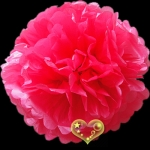 "12"" Tissue Paper Pom Poms Ball - Fuchsia(4 pieces)"