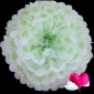 "16"" Light Lime Dot Tissue Paper Pom Poms Ball -(4 pieces)"