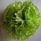 "12"" White Dot with Chartreuse Tissue Paper Pom Poms -(4 pieces)"