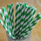 25 pcs Green Stripe Paper Straws