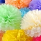 "8"" Samples for Tissue Paper Pom Poms Ball - mixed 28 colors"