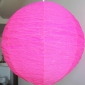 "12"" Diy changing shapes paper lantern-violet"