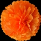 "18"" Tissue Paper Pom Poms Ball - Orange(4 pieces)"