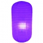 Purple Capsule Shaped Paper Lantern