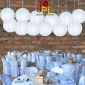 8 Inch Even Ribbing Ice Paper Lanterns