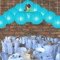 8 Inch Even Ribbing Baby blue Paper Lanterns