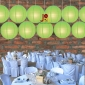 8 Inch Even Ribbing Light Lime Paper Lanterns