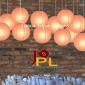 8 Inch Even Ribbing Peach Paper Lanterns