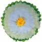 "10"" Paper Tissue Flower -ivory white yellow"